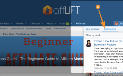 Pro Tricks for Using affLIFT