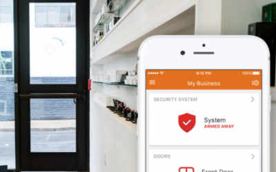 Best Business Security Systems